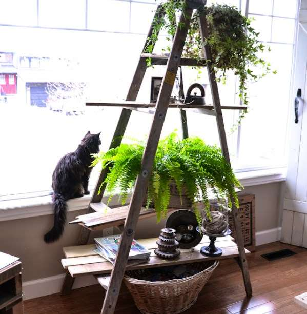 24+ DIY Plant Stand ideas to Fill Your Home With Greenery on House Plant Stand Ideas  id=98958