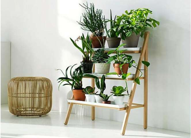 Plant Stand Ideas new