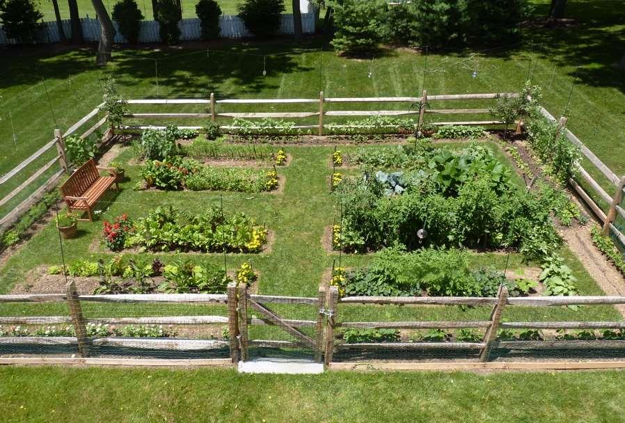 cheap vegetable garden fence
