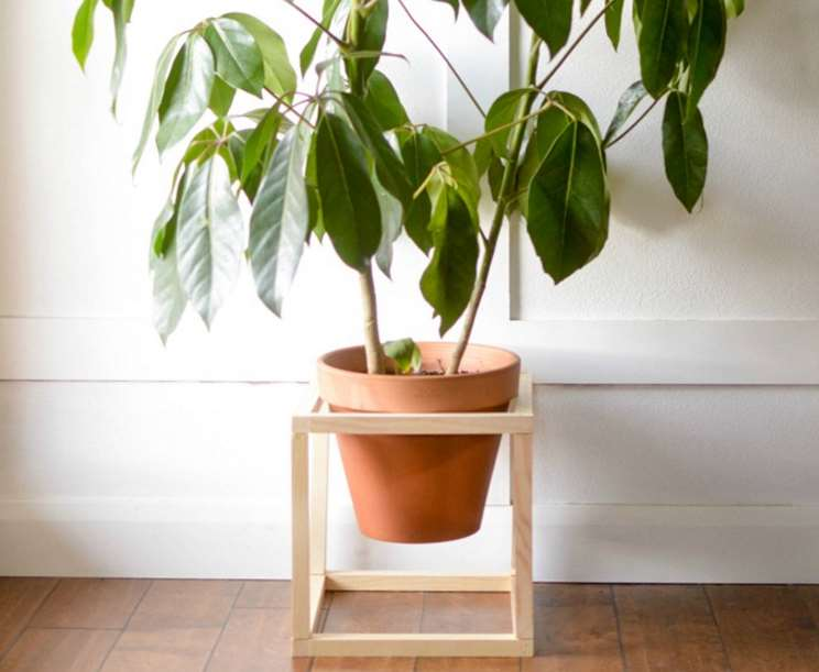 simple Best Standing Planter
