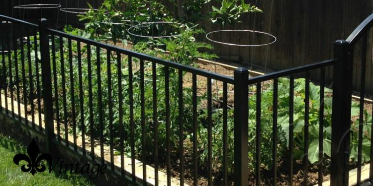 Image result for wrought iron garden fences