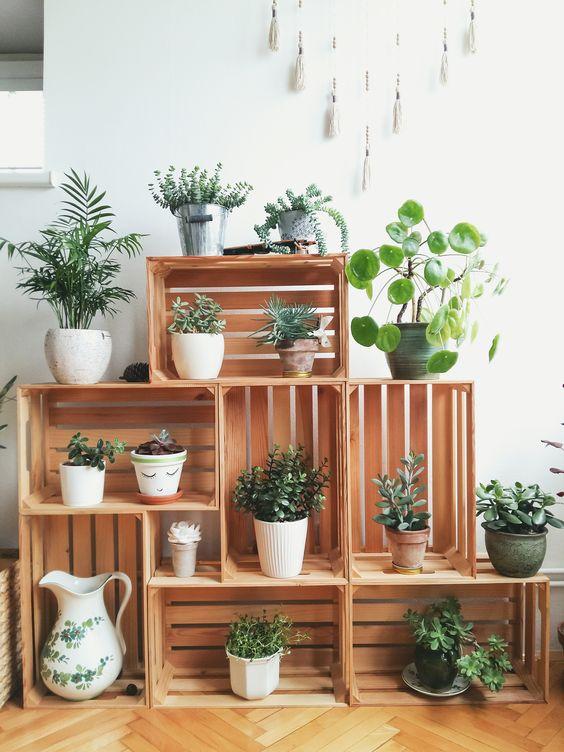 Unique Plant Stand