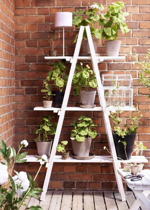 Stair Plant Stand